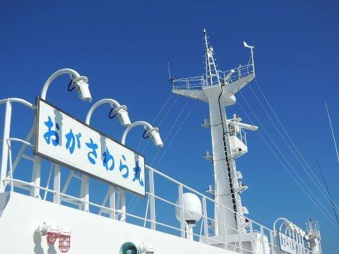 1707ogasawara02.jpg